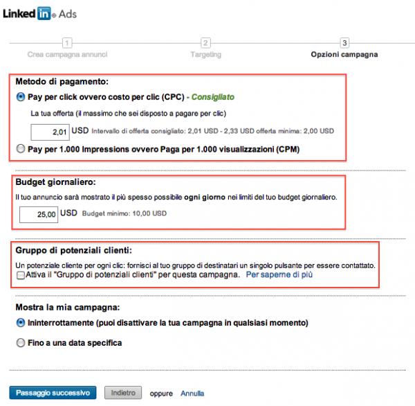Opzioni campagna Linkedin Ads